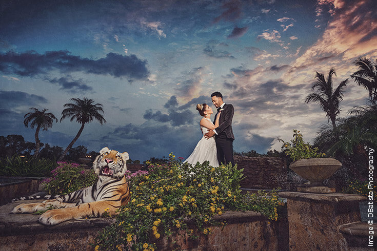 Shutter Magazine Inspirations | Best of Your Brand | Image by DBatista Photography