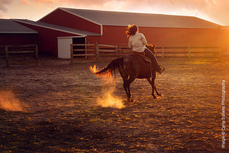 Shutter Magazine Inspirations | Best Natural Light Image | Image by Carly Sullens Photography