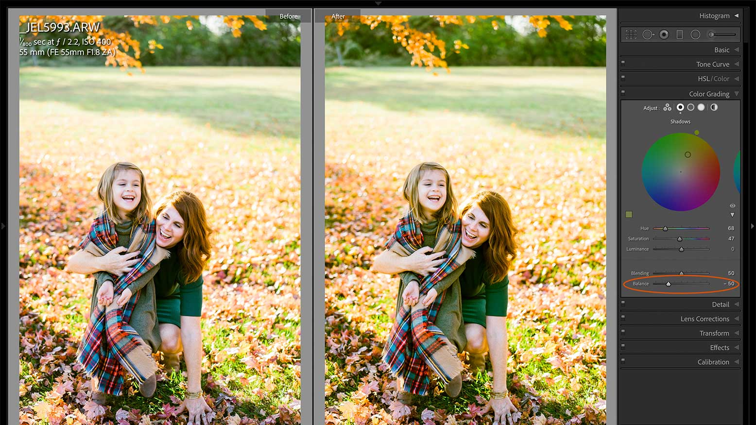 4 Steps to Use the Color Grade Tool in Lightroom Classic v10