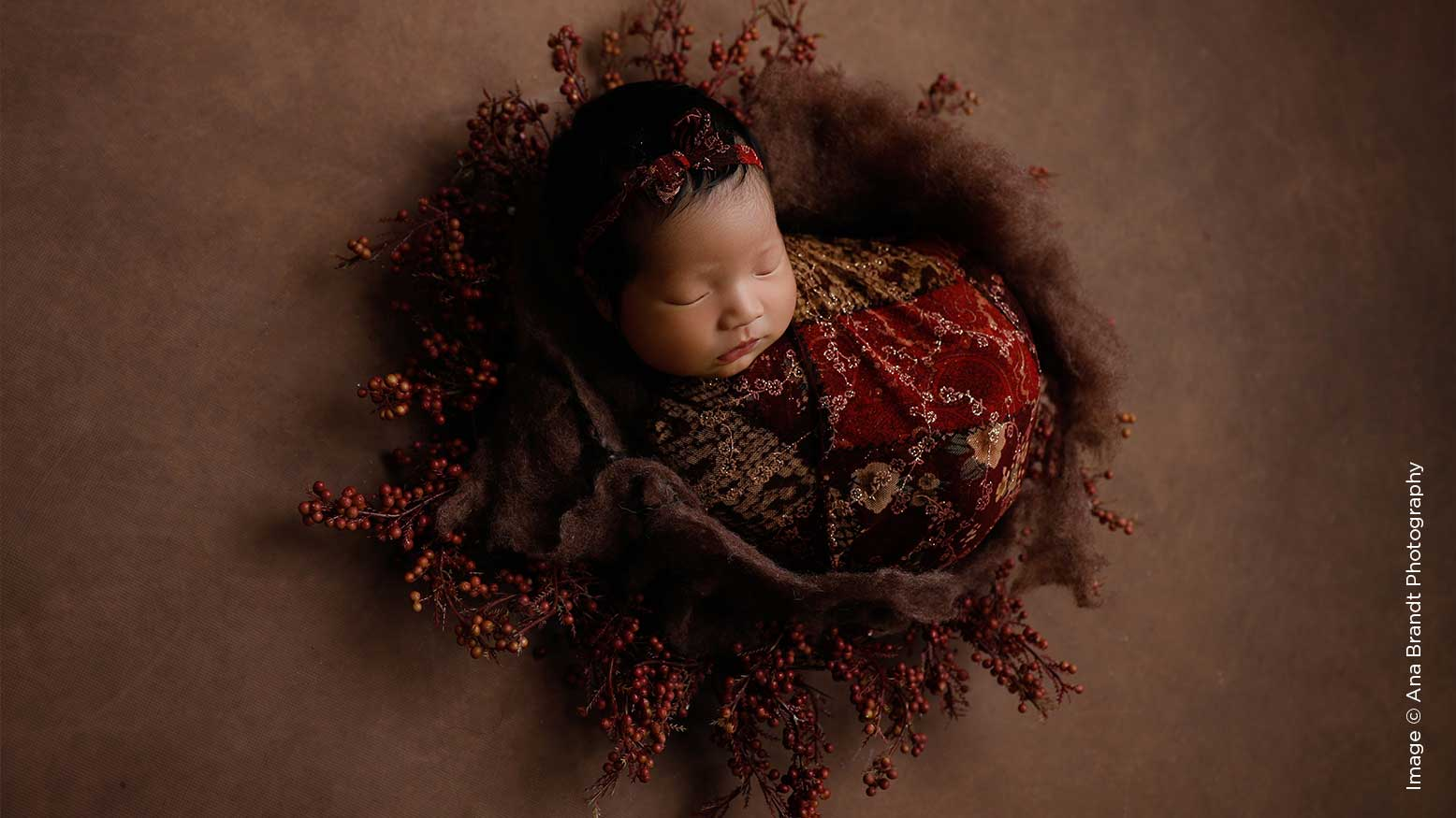 Newborn Photography | 6 Tips for Choosing Props