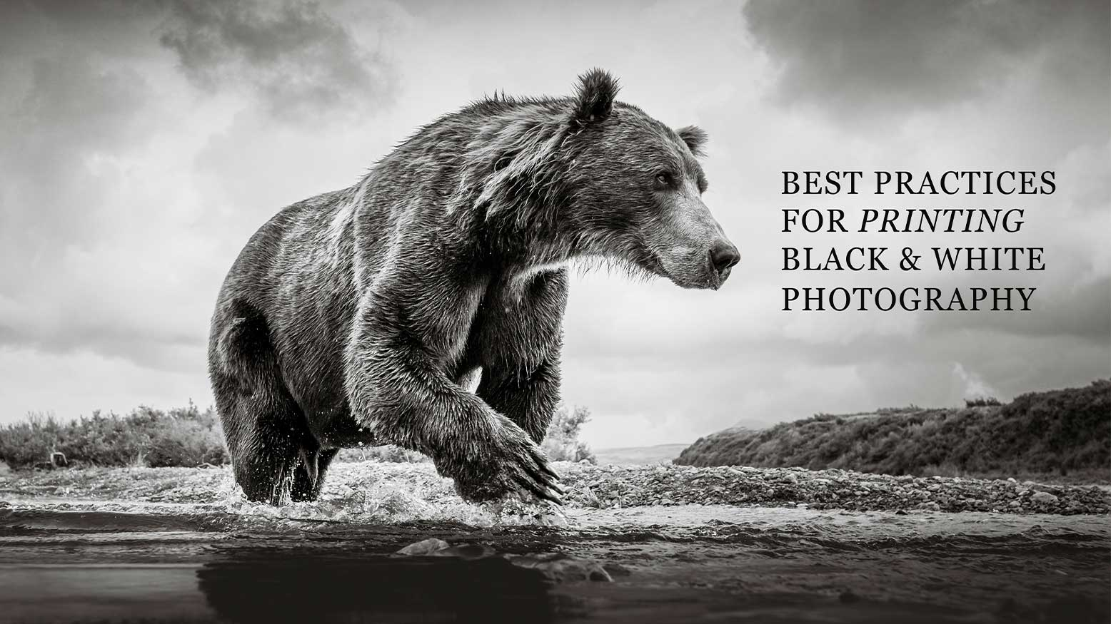 Best Practices for Printing Black & White Photography